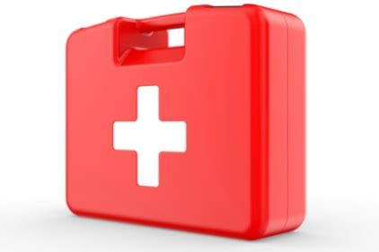 First Aid Training Proposal Essay Example for Free